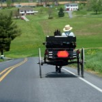 Genetic Genealogy and the Amish