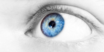 The Genetic Genealogist | The Family Tree of Blue-Eyed Individuals