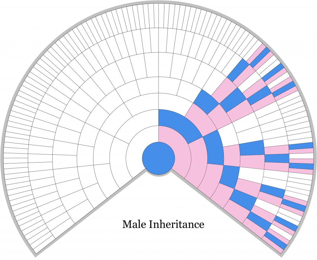 Male X-DNA Inheritance Chart